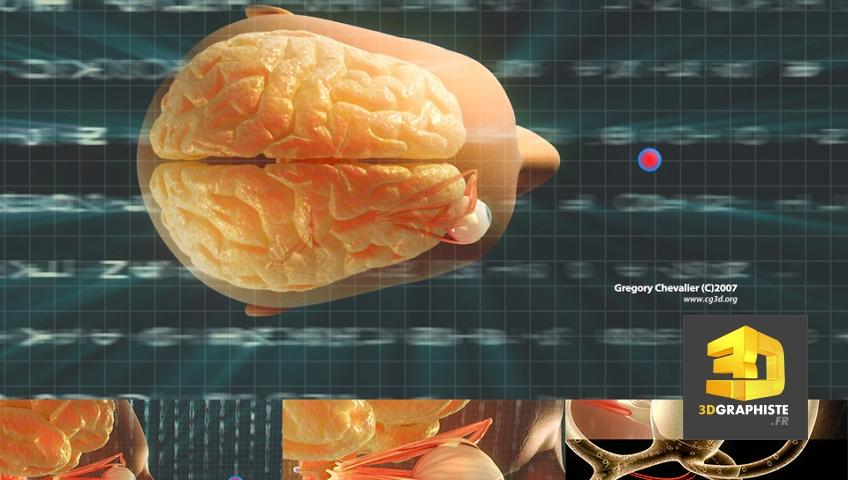 Film Médical 3D - L'Oreille Interne