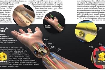 Illustration 3D pour magazine médical