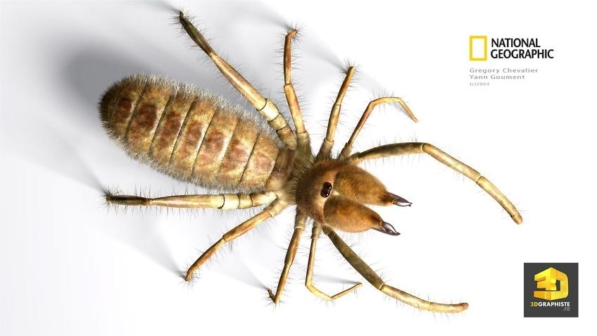 Illustration 3d scorpion en infographie 3d